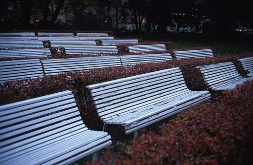 Stock Photo: 4176-5026 Empty benches in a park