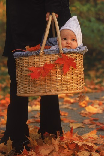 Mother taking baby in basket for autumn walk : Stock Photo