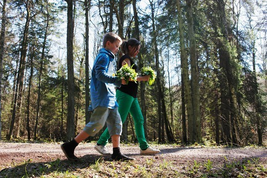 Springtime, Sweden : Stock Photo