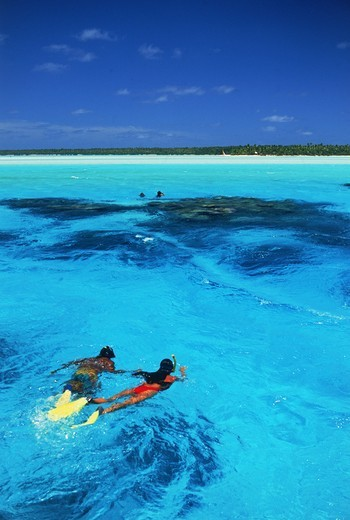 Couple snorkling in Aitutaki lagoon in Cook Islands : Stock Photo