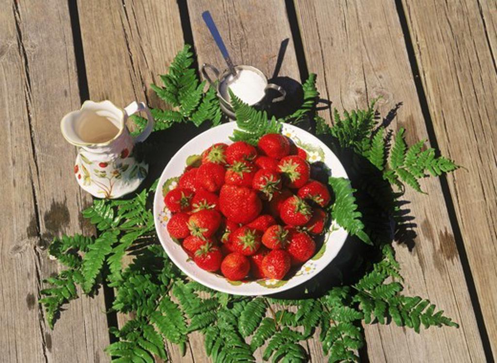 Stock Photo: 4176-7660 Bowl of strawberries with creram and sugar