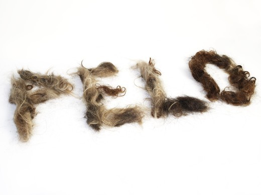 Stock Photo: 4177R-2939 The word PELO written by human hair