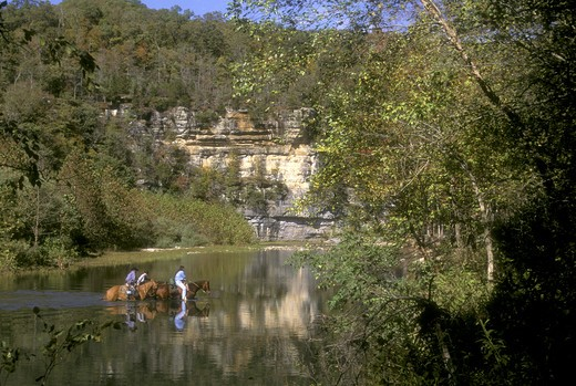 Stock Photo: 4179-33010 Horses with Riders crossing Buffalo River, Ponca, Arkansas