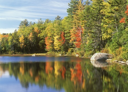 Stock Photo: 4179-33974 Autumn Colors & Reflections near Lake Durant Adirondack Mtns. New York