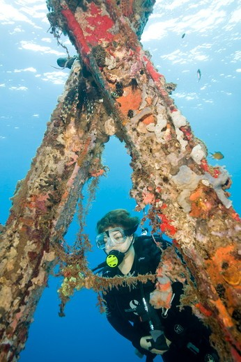 Stock Photo: 4179-40991 MR Female Diver under Jonny's Jetty, Kokopo/ Rabaul, Papua New Guinea