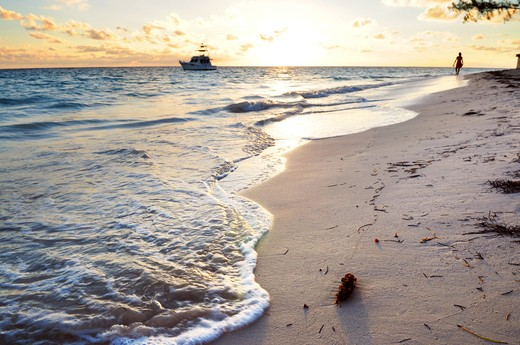 Tropical beach of a Caribbean island at sunrise : Stock Photo