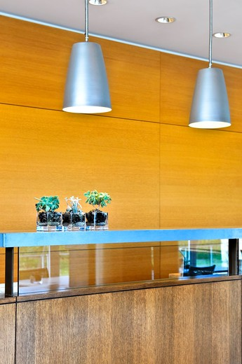 Stock Photo: 4183R-1389 Modern interior with light fixtures and wood panels
