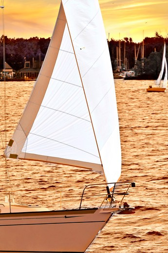 Stock Photo: 4183R-1853 Sailboat with white sail sailing at sunset