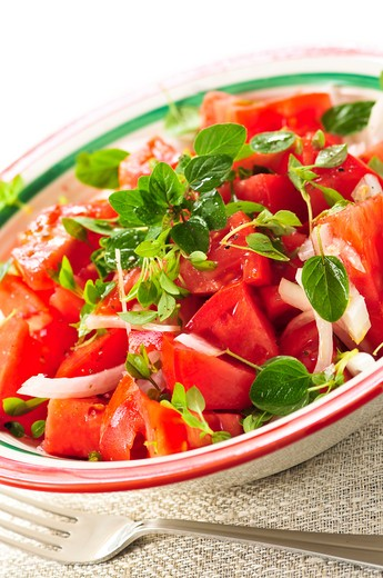 Stock Photo: 4183R-2258 Summer tomato salad with onions and herbs