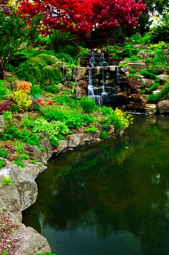 Cascading waterfall and pond in japanese garden : Stock Photo