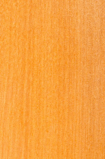 Stock Photo: 4183R-2778 Close up of prefinished hardwood flooring sample