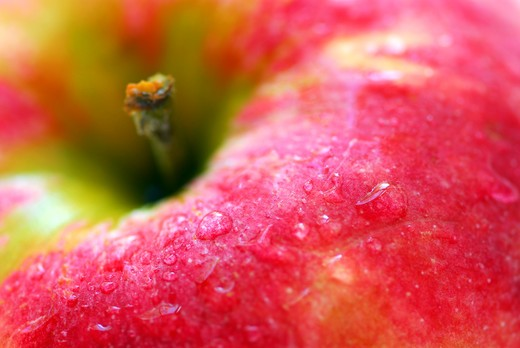 Macro of red apple with water droplets : Stock Photo