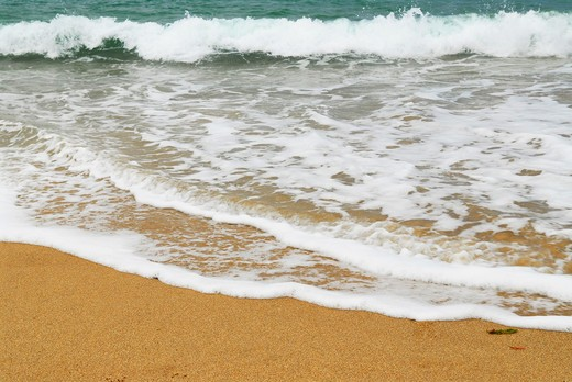 Stock Photo: 4183R-3005 Ocean wave advancing on a sandy beach