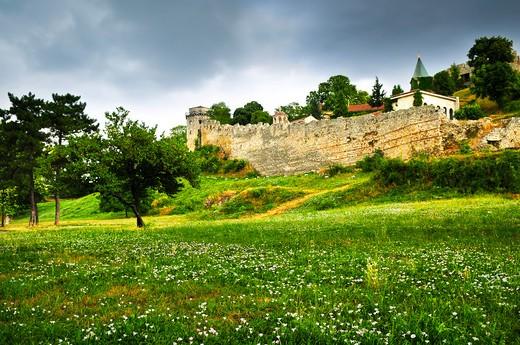 Kalemegdan fortress in Belgrade with field of wildflowers : Stock Photo