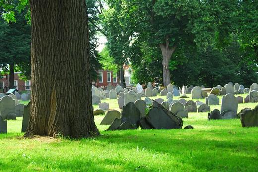Stock Photo: 4183R-3280 Old cemetery in Boston