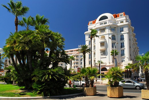 Luxury hotel on Croisette promenade in Cannes : Stock Photo