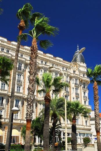 Luxury hotel on Croisette promenade in Cannes France : Stock Photo