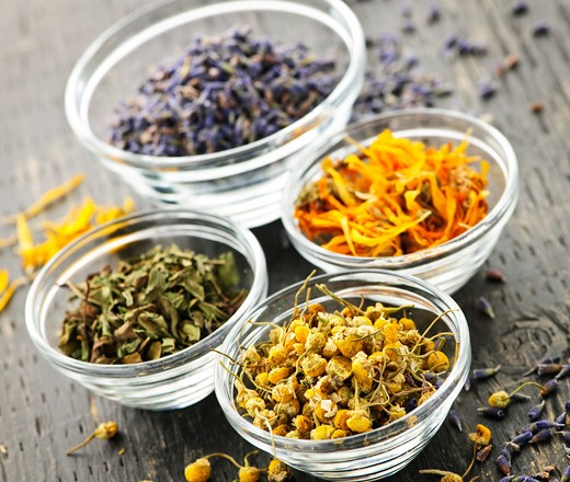 Assortment of dry medicinal herbs in glass bowls : Stock Photo