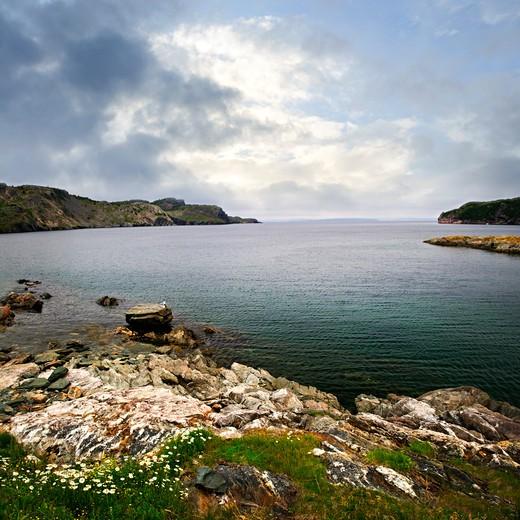 Scenic coastal view of rocky Atlantic shore in Newfoundland, Canada : Stock Photo