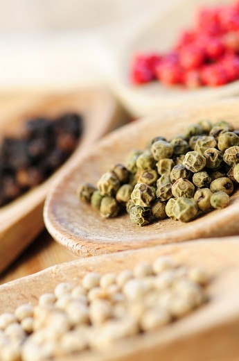 Stock Photo: 4183R-8333 Assorted peppercorns in wooden cooking spoons macro