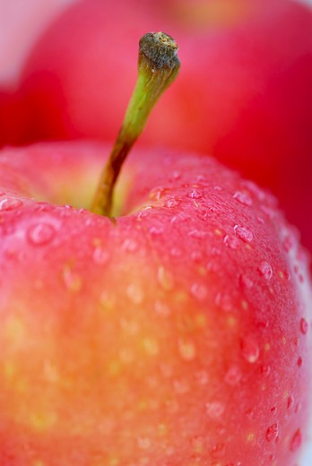 Macro of red apples with water droplets : Stock Photo