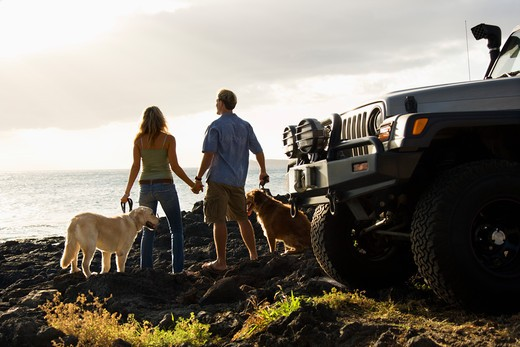 Stock Photo: 4184R-11041 Rear view of a man and woman holding hands and relaxing with their dogs at a beach with the edge of an SUV visible in the foreground. Horizontal format.