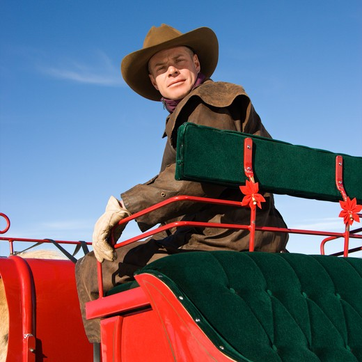 Mid-adult Caucasian man in sleigh looking at viewer. : Stock Photo