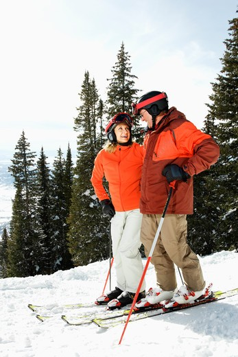 Skiers side by side on a snowy ski slope with trees in the background. Vertical shot. : Stock Photo
