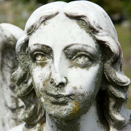 Close-up of Guardian Angel statue's face in graveyard. : Stock Photo