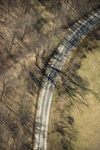 Stock Photo: 4184R-357 Aerial view of rural country dirt road with bare trees.
