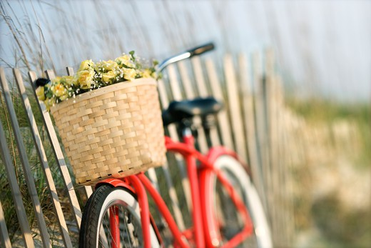 Red vintage bicycle with basket and flowers leaning against wooden fence at beach. : Stock Photo