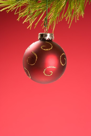 Stock Photo: 4184R-8277 Still life of red Christmas ornament hanging from pine branch.