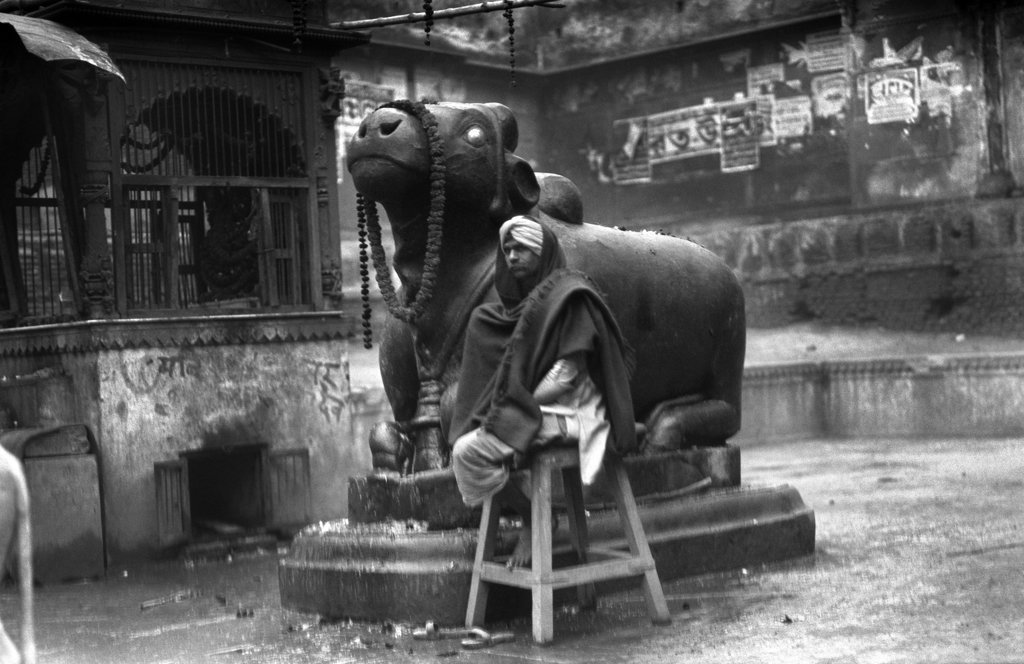 Stock Photo: 4186-14374 1920S 1930S Benares India Man In Turban Seated By Statue Of Nandi Scared Hindu God Bull Religion Hinduism