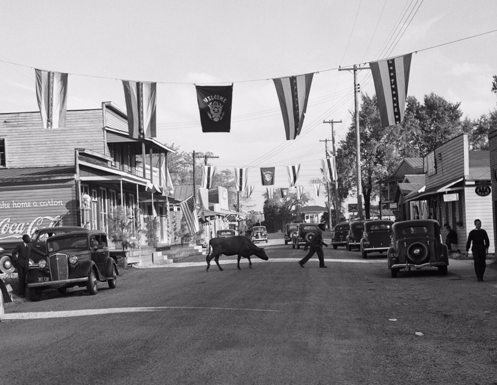 Stock Photo: 4186-14474 1930S Main Street Small Town With Flags Flying & Cow Crossing Street