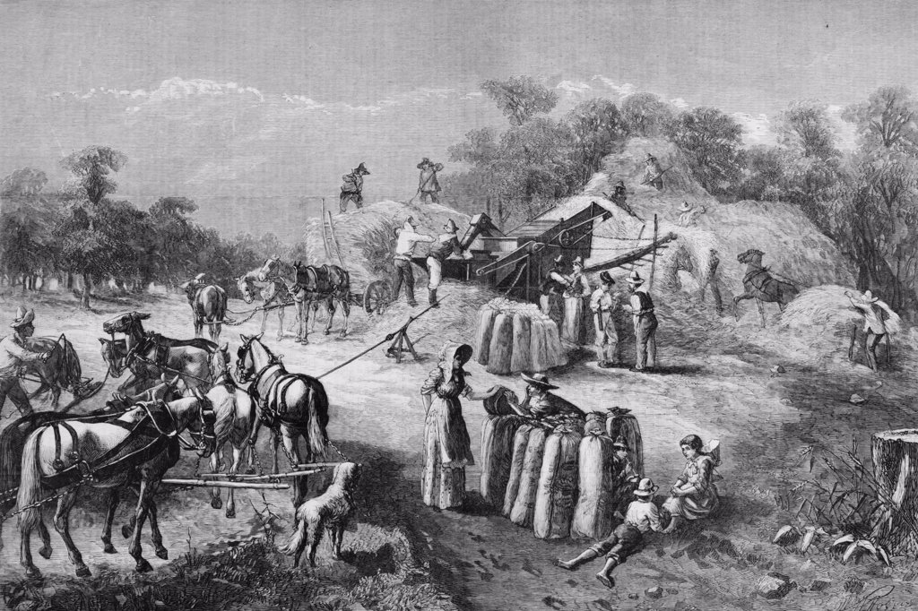 Stock Photo: 4186-17468 1870S 1878 Farm Harvest Scene Threshing Grain Illustration By O. D. Steinberger