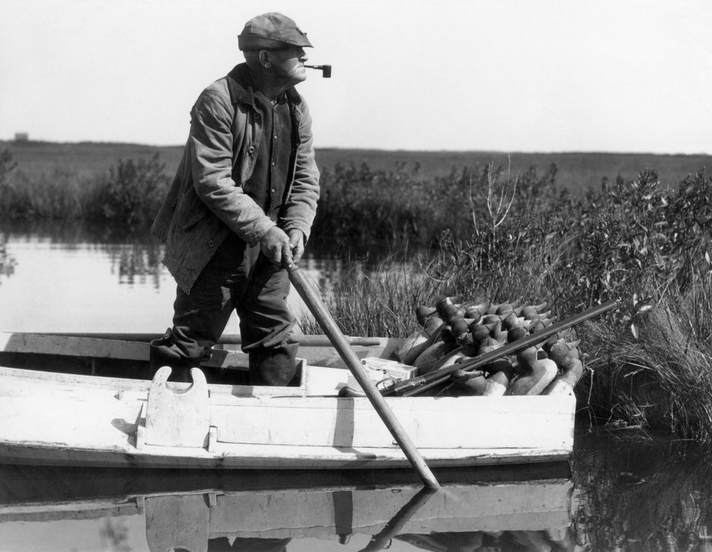 Stock Photo: 4186-2053 1920S 1930S Senior Man Standing In Boat About To Deploy Duck Decoys In Wetlands Marsh