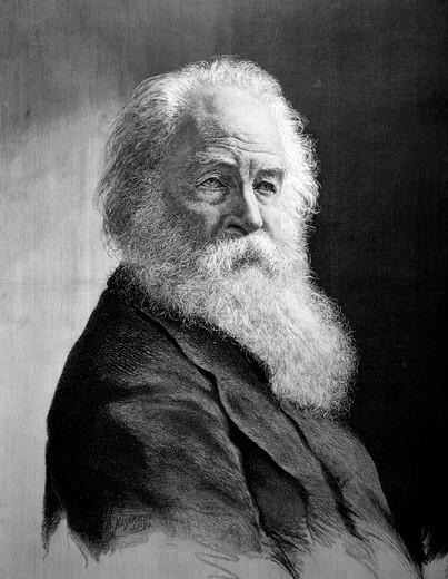 Stock Photo: 4186-3341 Illustration Portrait Walt Whitman