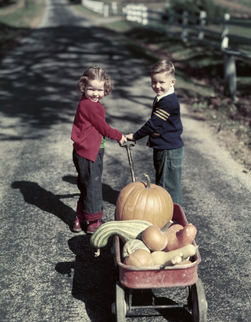 Stock Photo: 4186-7104 1950S Two Smiling Young Kids Boy Girl In Blue Jeans Pulling Red Wagon Full Of Harvest Pumpkins And Gourds
