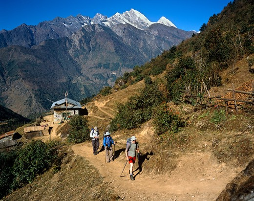 Stock Photo: 4192-1436 Trekking Path,Himalayas,Nepal