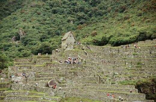 Machu Picchu, Urubamba Valley, Peru : Stock Photo