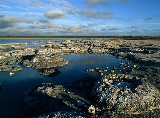 Lake Thetis, Western Australia, Australia : Stock Photo