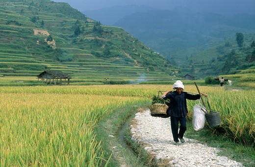 Xijiang, Guizhou, China : Stock Photo