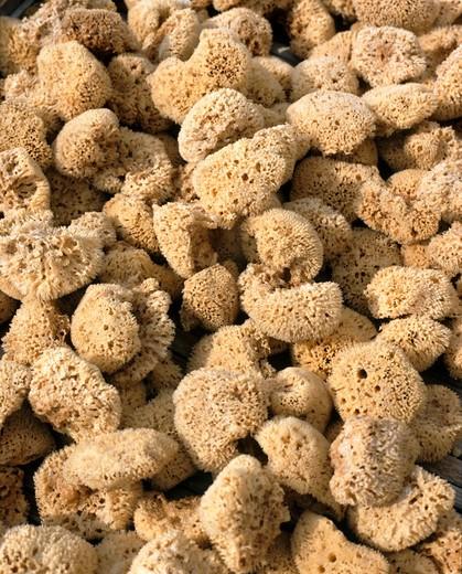 Stock Photo: 4192-6245 Sponges, Greece
