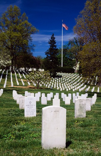Stock Photo: 4192-6379 Cemetery, Virginia, USA