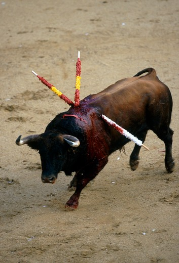 Stock Photo: 4192-6411 Madrid, Spain