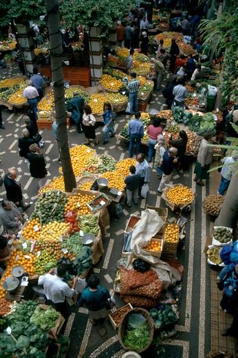 Funchal, Madeira : Stock Photo