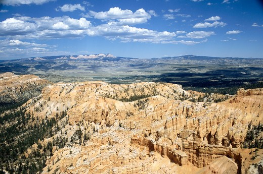 Bryce Canyon, Utah, USA : Stock Photo