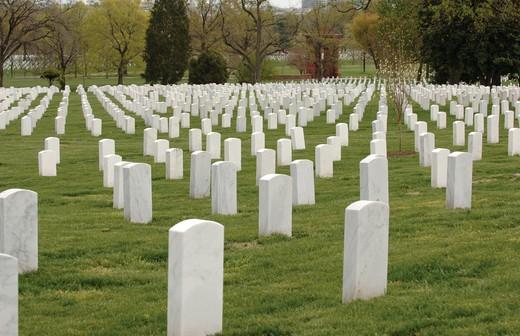 Field of headstones at Arlington National Cemetery in Washington DC : Stock Photo