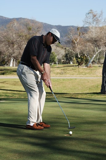 Stock Photo: 4193R-2147 Golfer putting a golfball into the hole on a golf course putting green