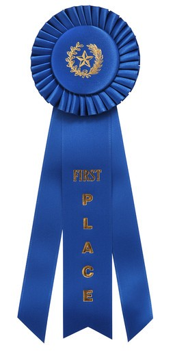 classic blue ribbon with  First Place  embossed on center ribbon. Isolated on white with clipping path : Stock Photo